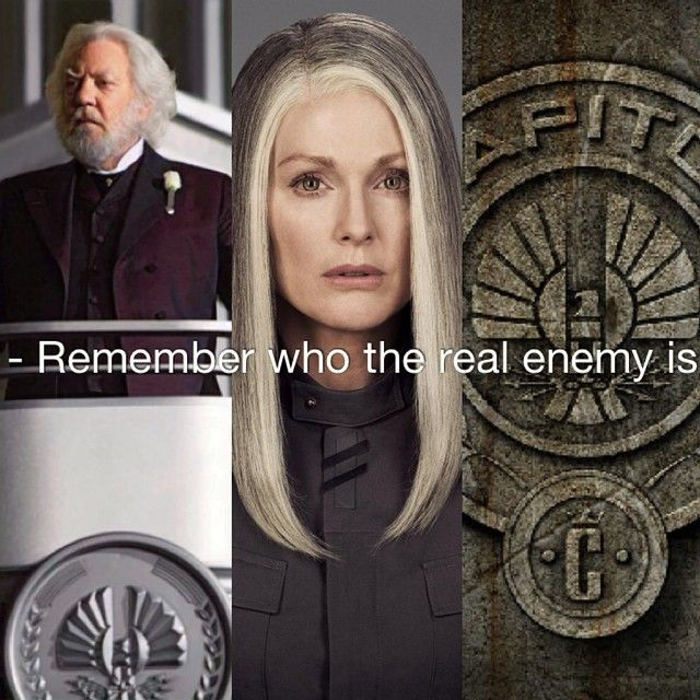 Remember who the real enemy is...
