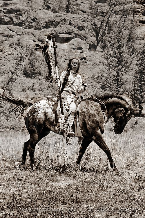 Mounted Warrior Native American Indian In Traditional