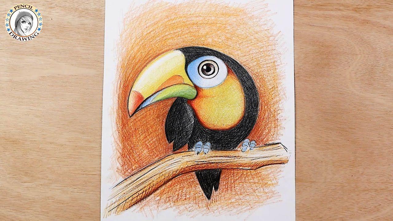 How To Draw A Bird Toucan Bird كيف ترسم طائر سهل للمبتدئين طائر الط In 2021 Bird Drawings Drawings Drawing For Beginners
