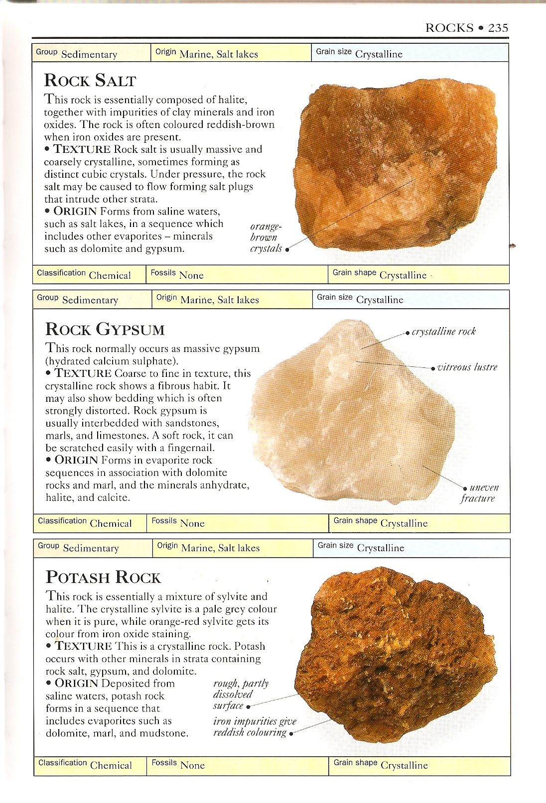 Gypsum Potash Salt Rocks And Minerals Minerals Rocks And Crystals