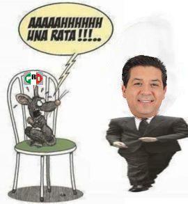 jajajajaja  que susto llevaron  #reynosafollow #reynosa #matamoros #cdvictoria hasta las ratas tienen miedo