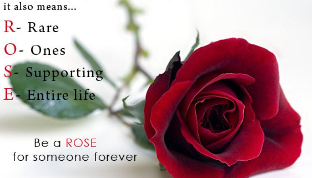 Best lines on happy rose day 2018 to my girlfriend love