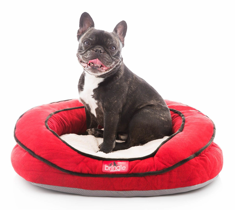 Premium Waterproof Memory Foam Bolster Pet Bed with