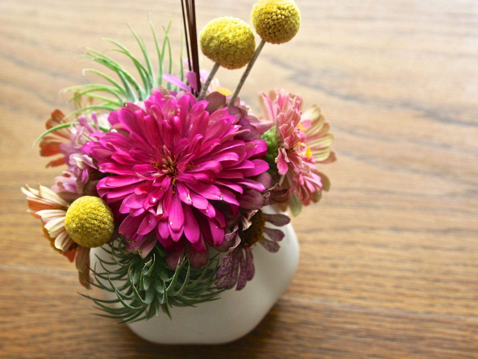 Small floral with air plants and Billy Balls $28