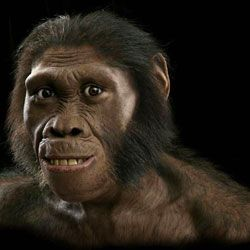 Humans Still Eating Humans : Discovery News