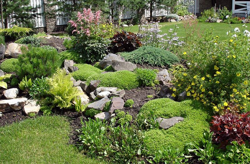 stunning rock garden design ideas - Garden Design Using Rocks