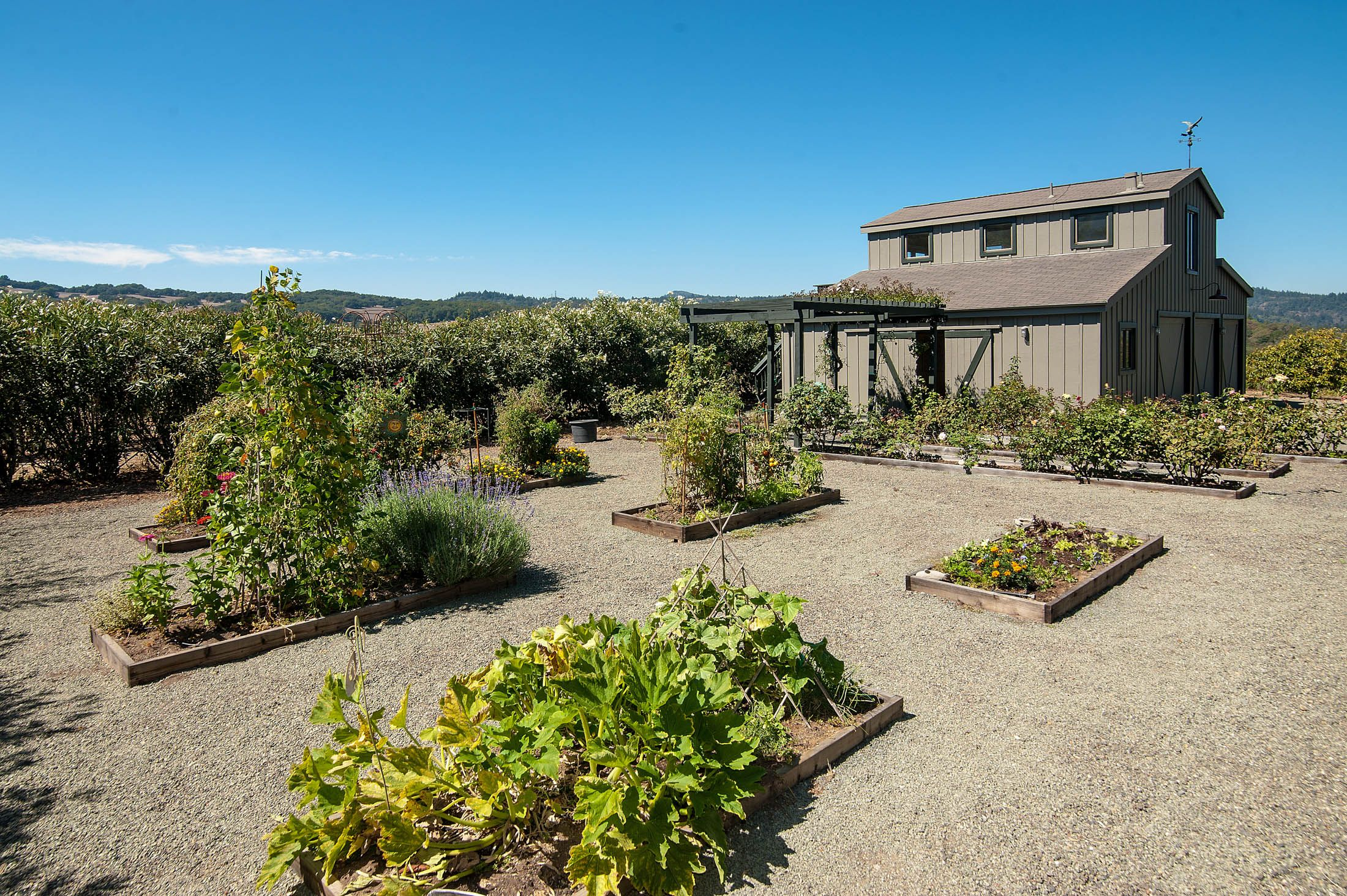 Barn and getable gardens | Garden room, Land for sale ...