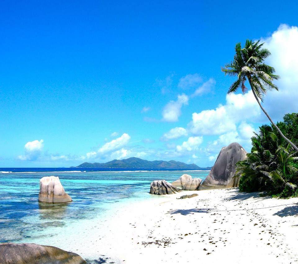 Seychelles Beach: Practice Yoga In The Seychelles