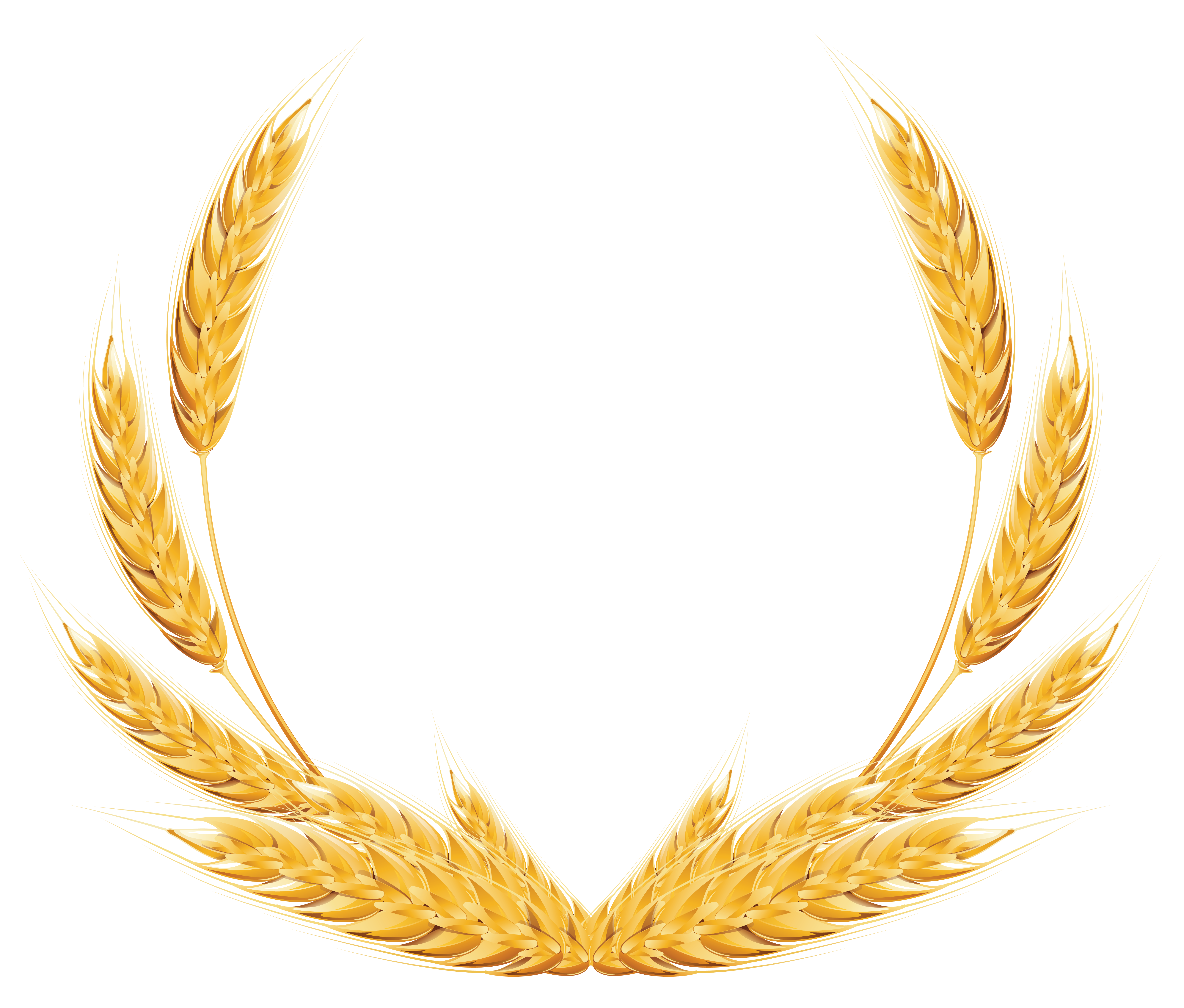 Wheat Decoration PNG Clipart Image