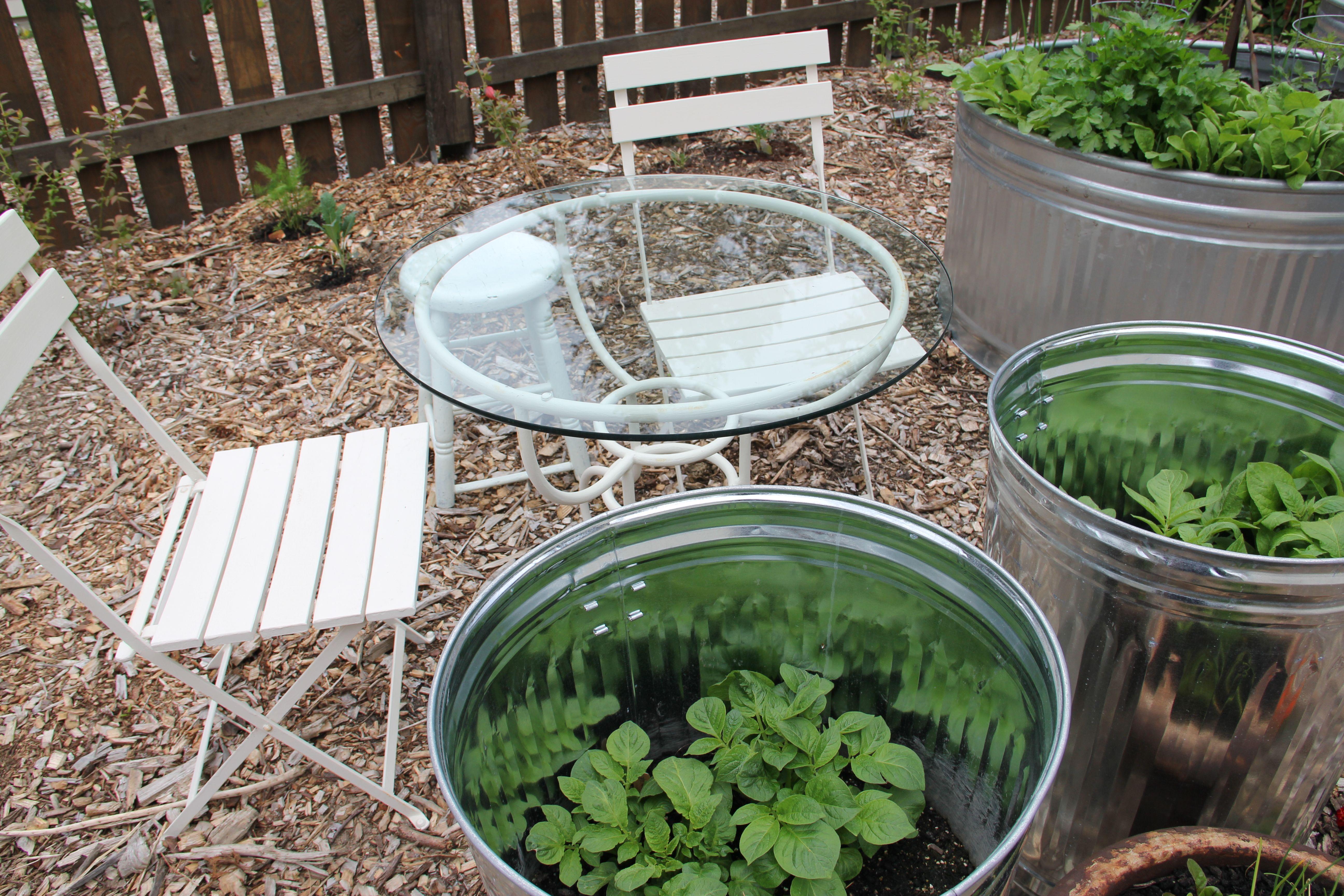 Gardening beth evansramos blog stock tank garden