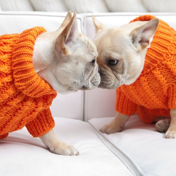 need to knit my precious boy one of these sweaters!