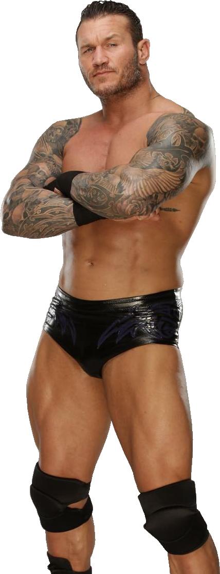 Pin On Randy Orton