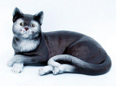 domácí černé kočička video