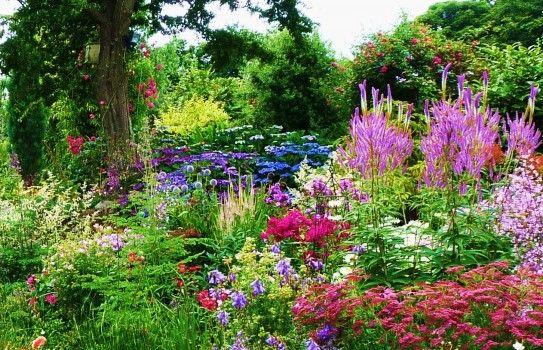 Cottage Gardens Plants Ideas Stylish Cottage Garden Cottage Garden Ideas Uk Qefriad Garden Ideas Uk Cottage Garden Plan Small Cottage Garden Ideas
