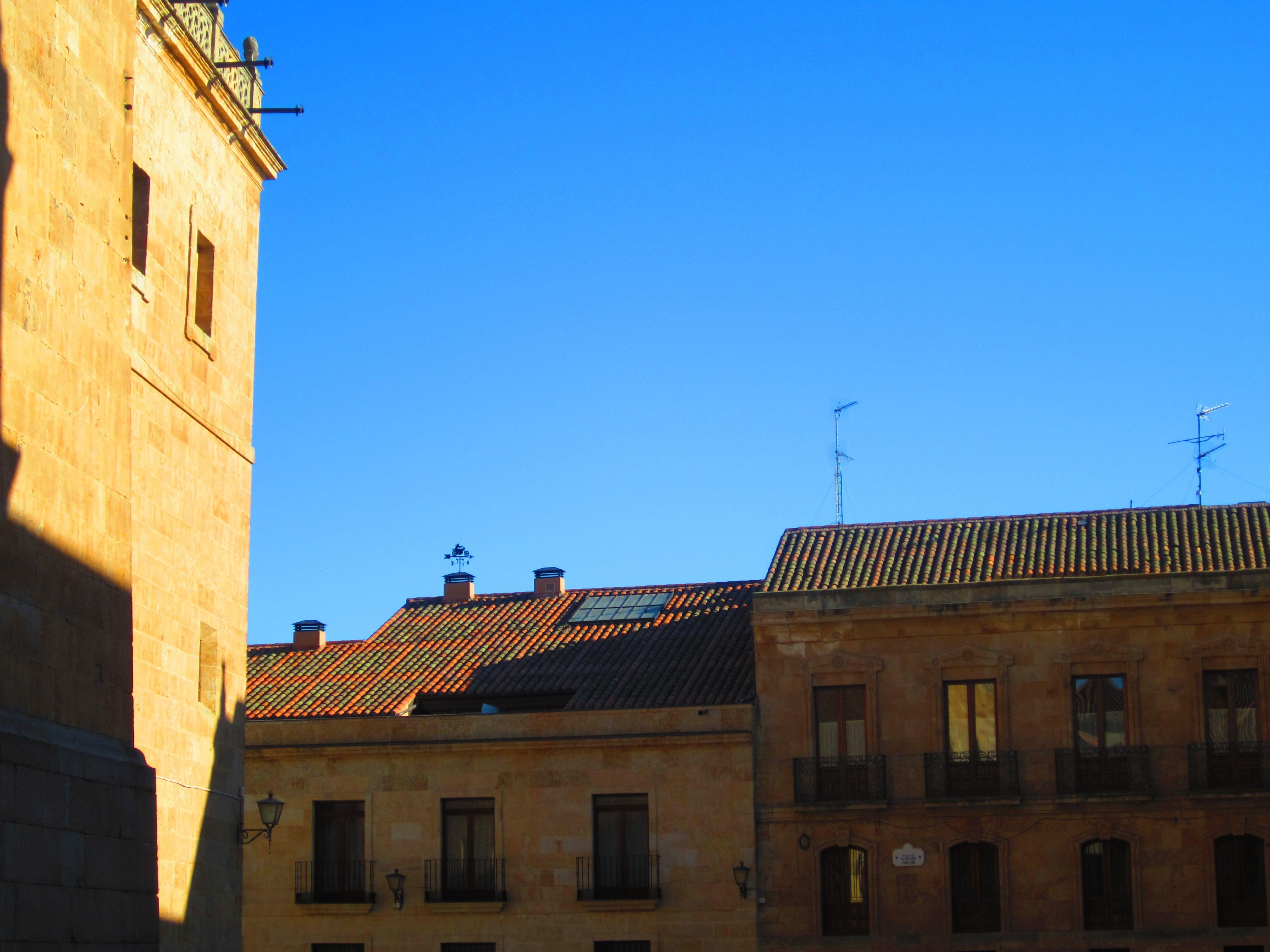 My favorite corner of Salamanca, Spain  Complete with plenty of birds and street musicians