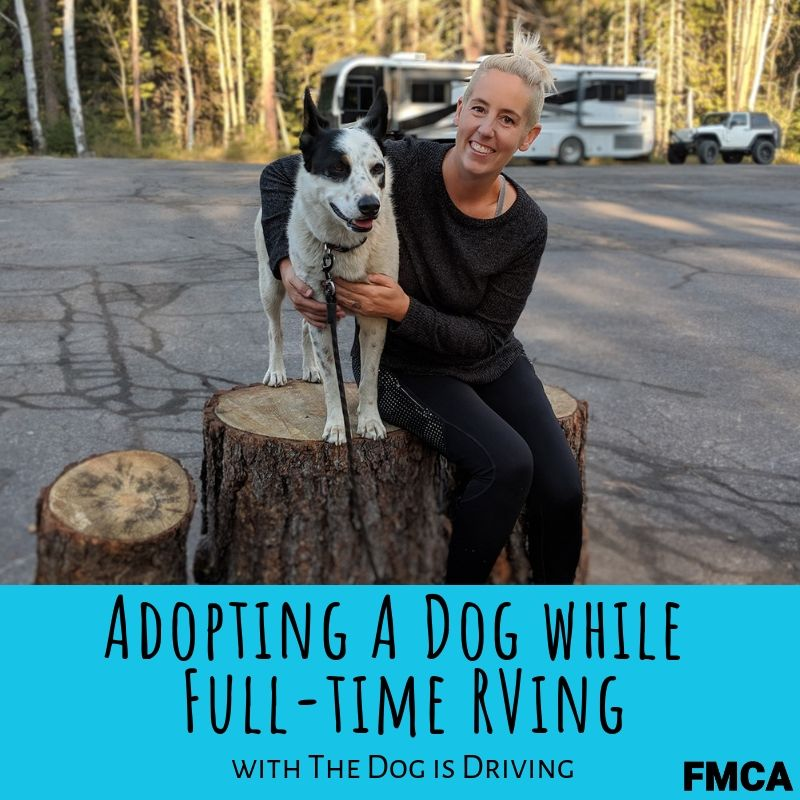 The Dog is Driving has some adoption tips for RVers! Dog