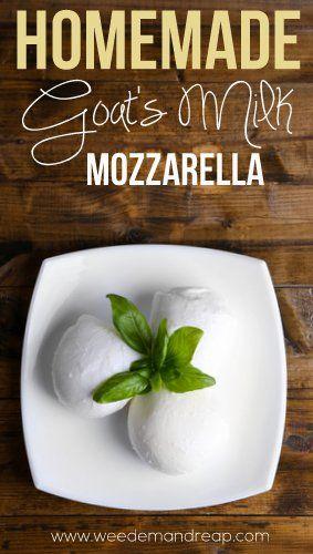 モッツアレラチーズのつくりかた。Recipe | Homemade Goat's Milk Mozzarella - Weed'em & Reap