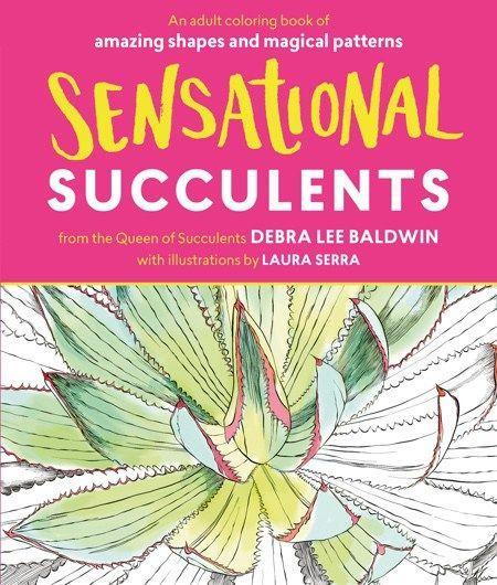 13 Sensational Schemes That Are: 13 Best Succulent & Cactus Coloring Books & Pages