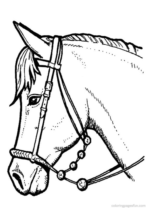horse coloring pages 63