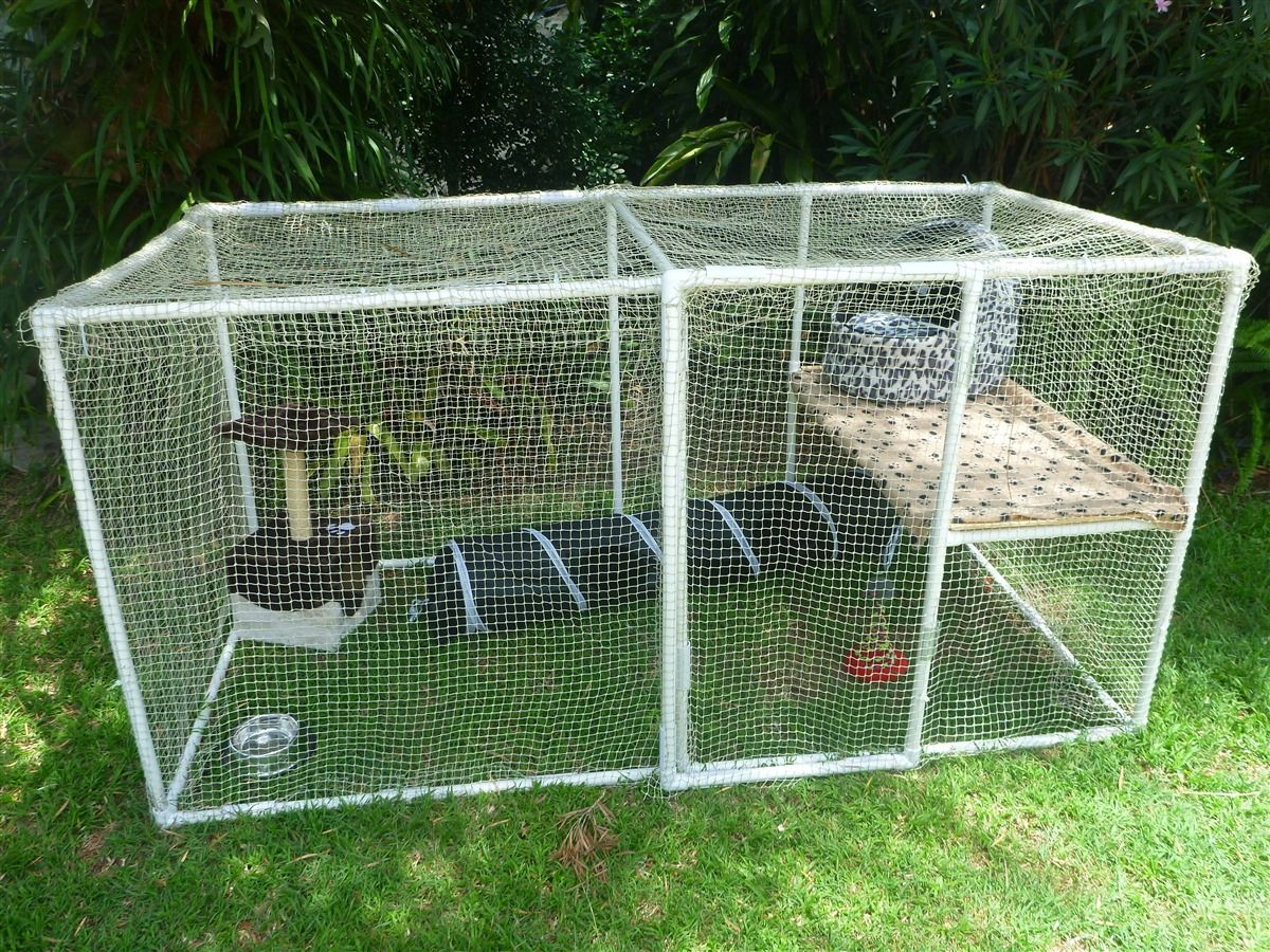 Fully Enclosed Purrfect Penthouse Kedi Cats Cat