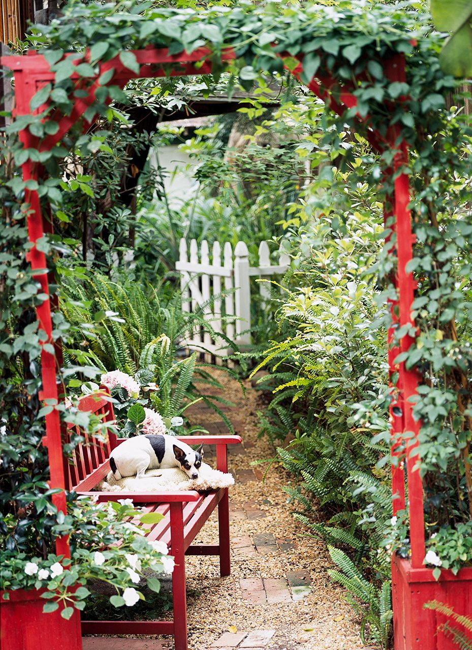 Photo of 20 Gorgeous Arbor Ideas for an Enchanting Outdoor Space