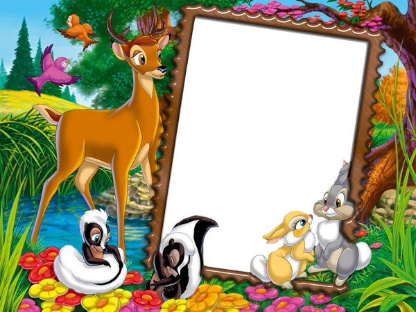 Cute Transparent Kids Photo Frame with Wild Animals | abdelhamid ...