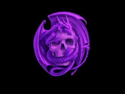 Purple Skull Dragon Background Black