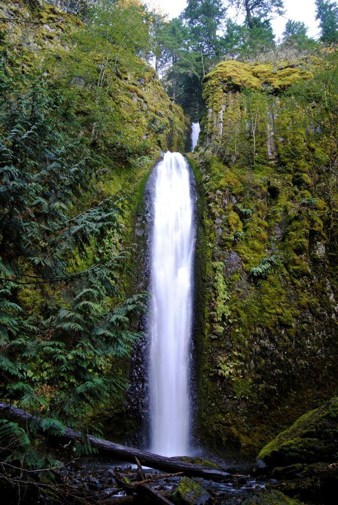 Fun Scramble! Gorton Creek Falls #Oregon #OregonHikes #ColumbiaRiverGorge #GortonCreekFalls