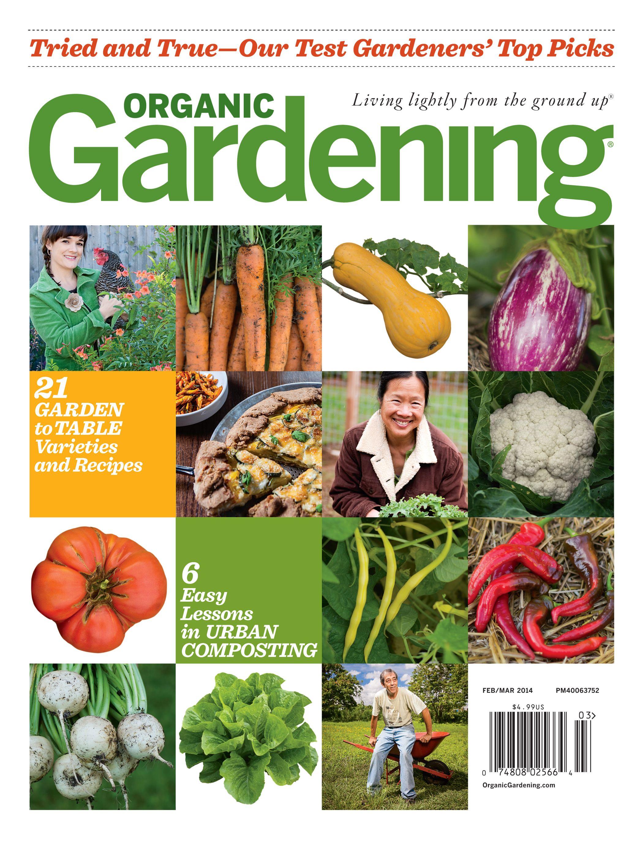 magazines issue finegardening garden choosing planting gardening conifer a and