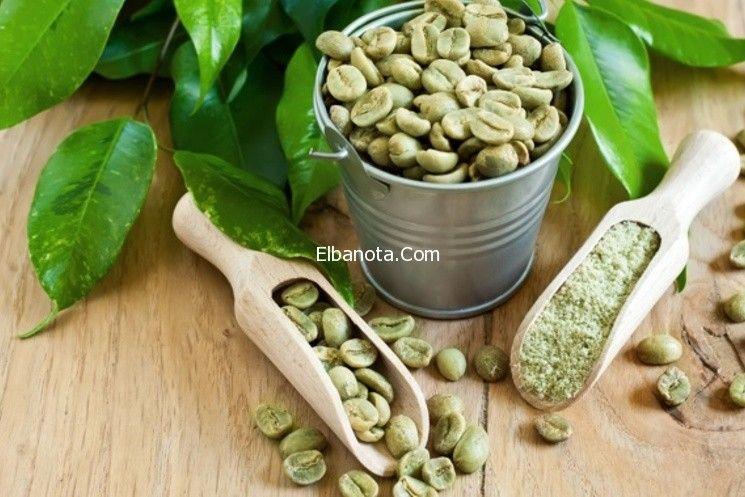 فوائد حبوب البن الأخضر للتخسيس وأين يباع البن الأخضر Green Coffee Extract Green Coffee Bean Extract Green Coffee