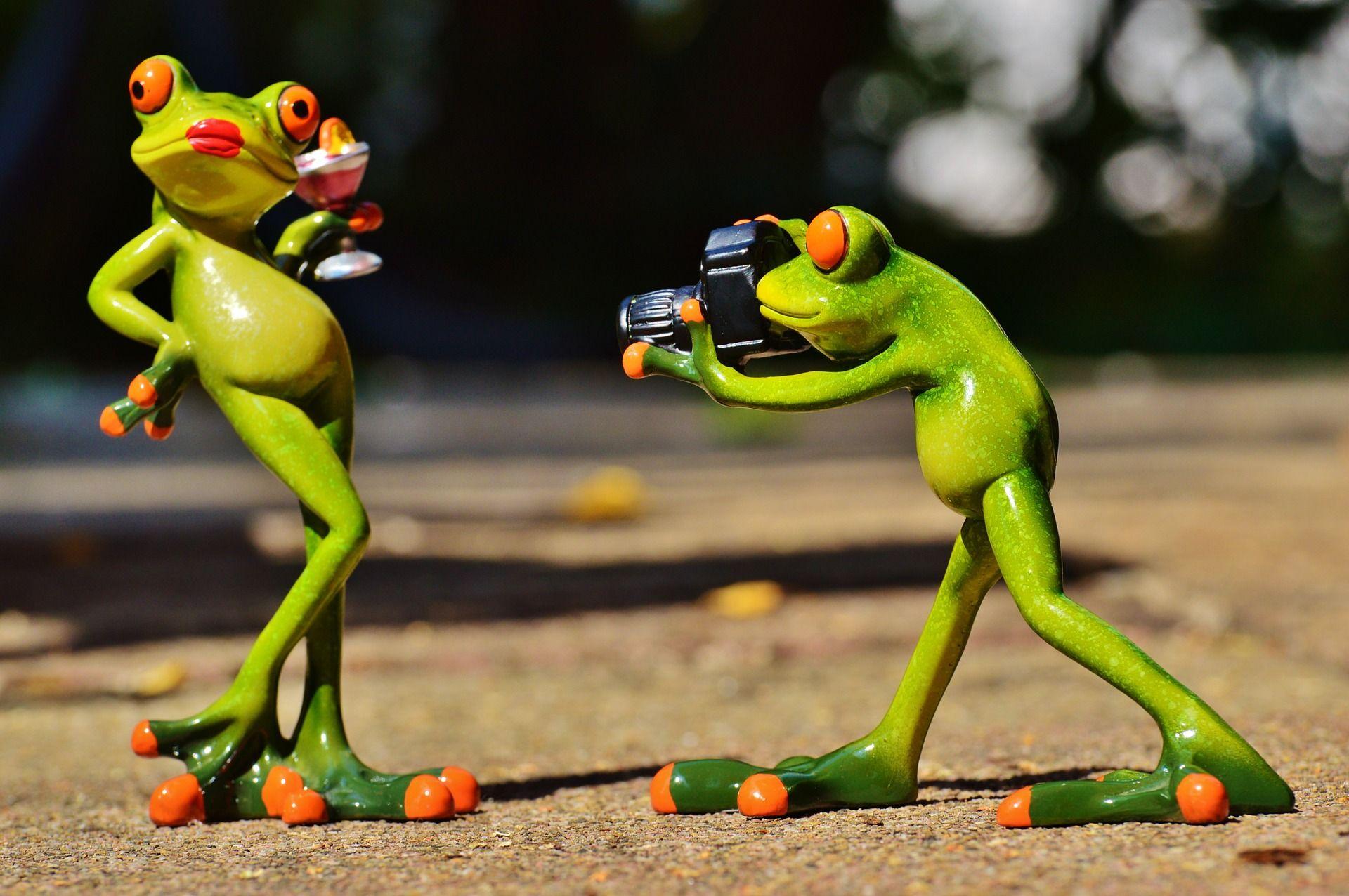 frog photographer model photo model lady posing | Grenouilles ...