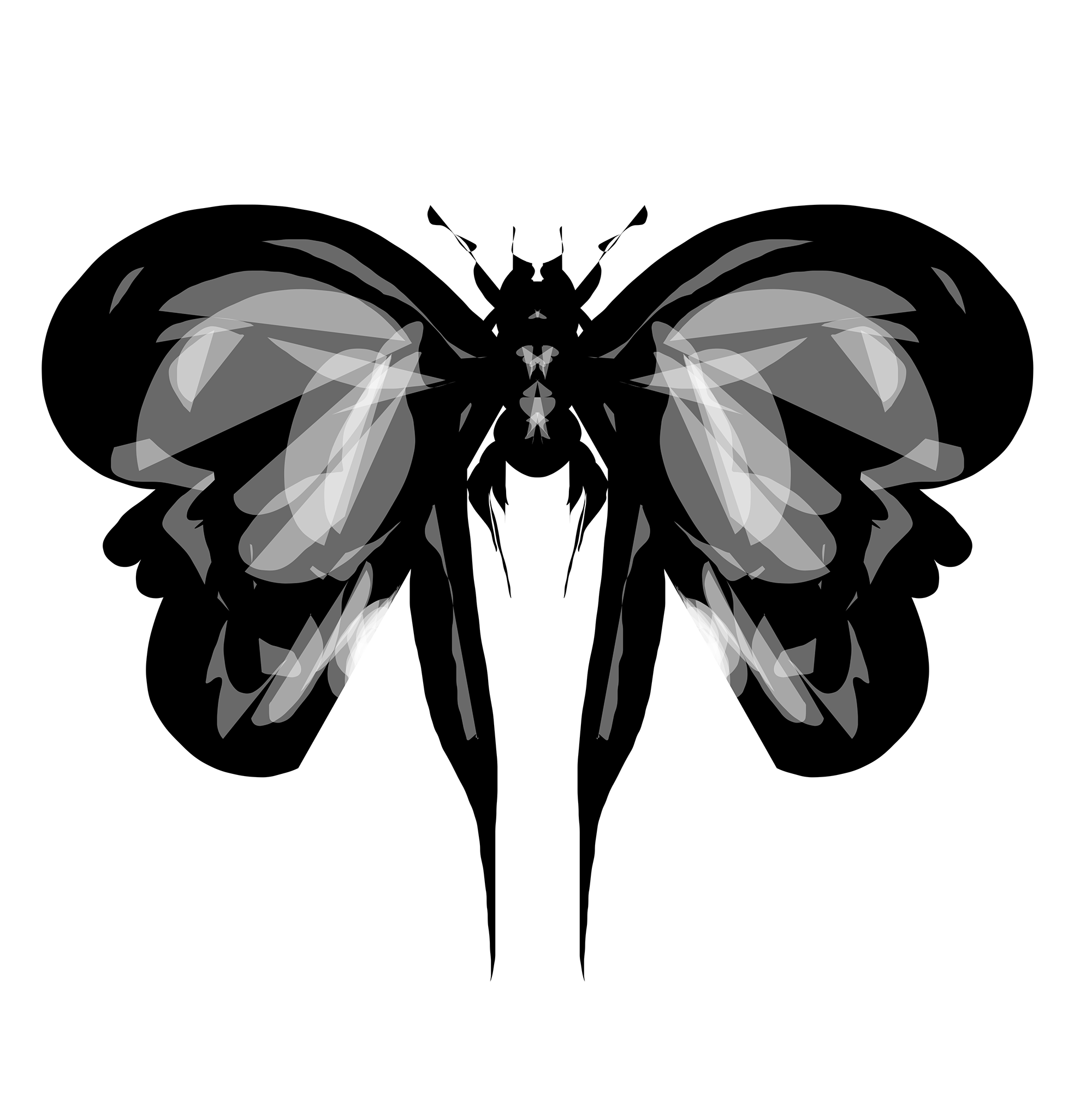 Insect on Alchemy before Photoshop, NO.1  23/09/14