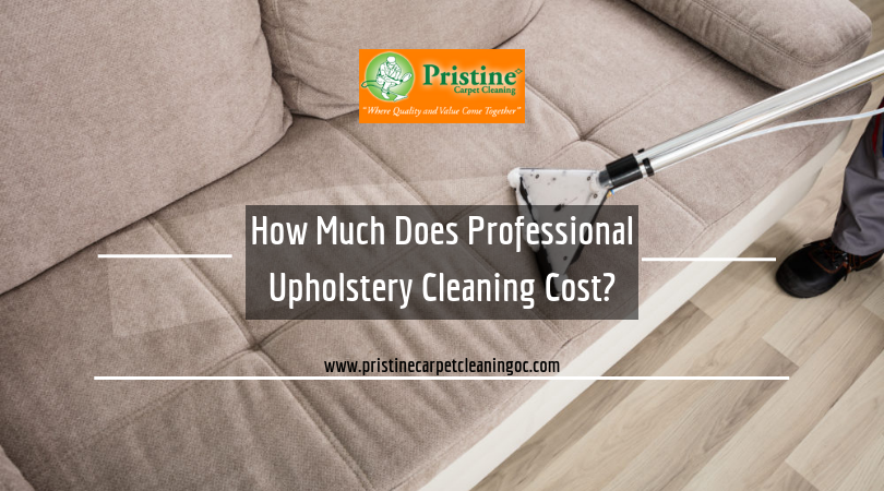 How Much Does Professional Upholstery Cleaning Cost With Images