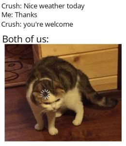 Pin By Patata On Oof Funny Relatable Memes Funny Animal Memes Funny