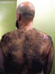 Think, men with hairy back pictures