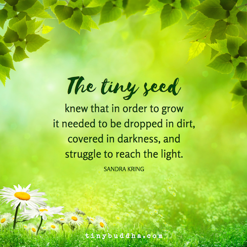 The Tiny Seed Knew That In Order to Grow The tiny seed