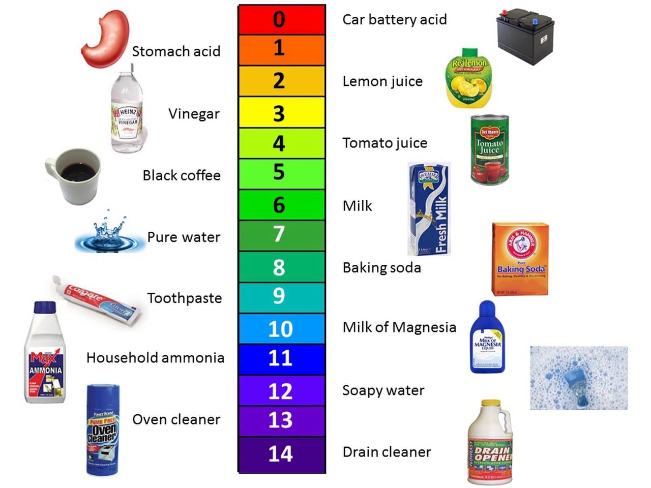 ph scale for kids - Yahoo Image Search Results | Pure ...