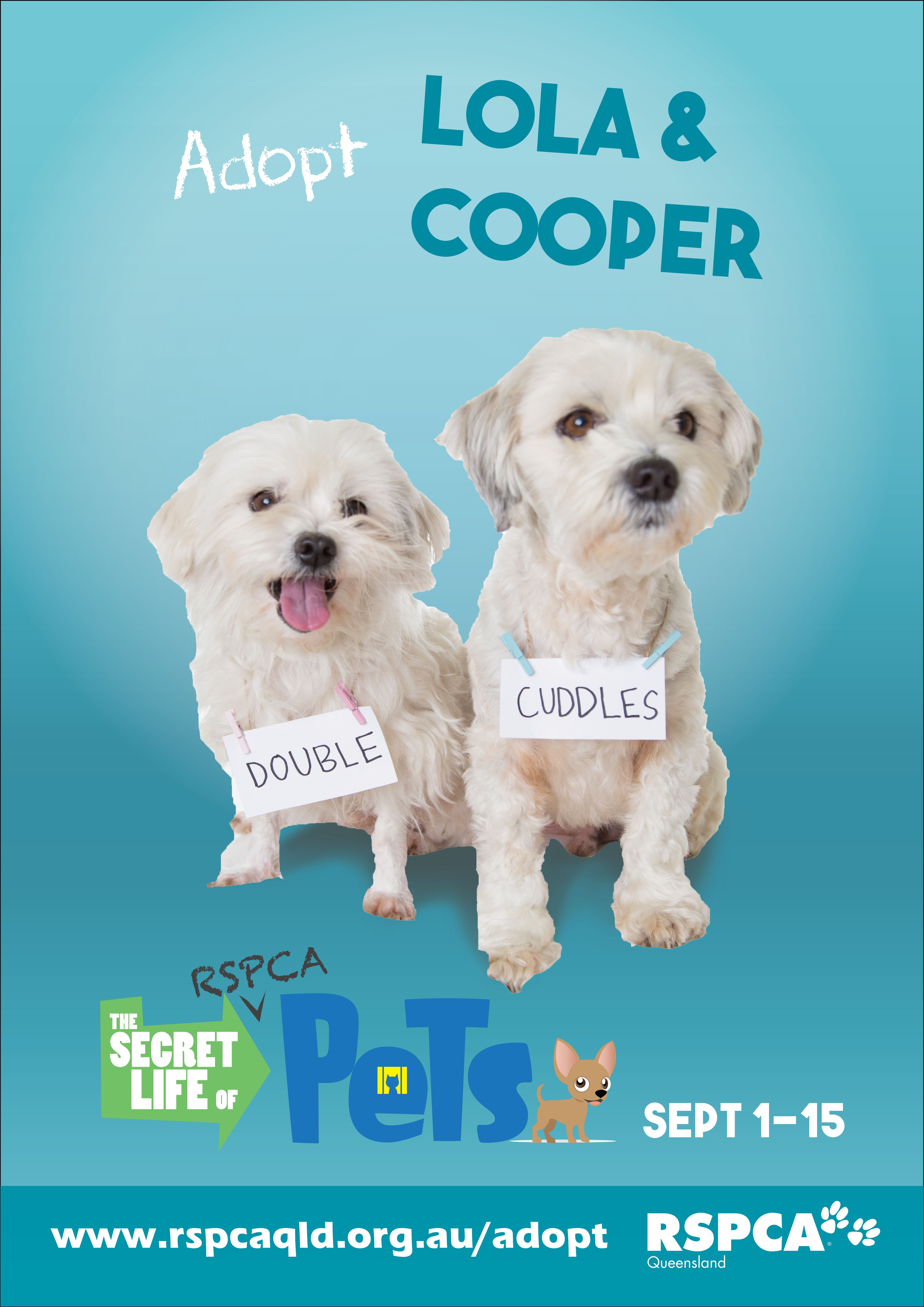 Double the dogs, double the love! RSPCApetsecretlife