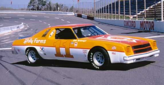 Sunny King Ford >> 1977 Cale Yarborough Holly Farms - - Yahoo Image Search Results | Sim Racing Paints | Nascar ...