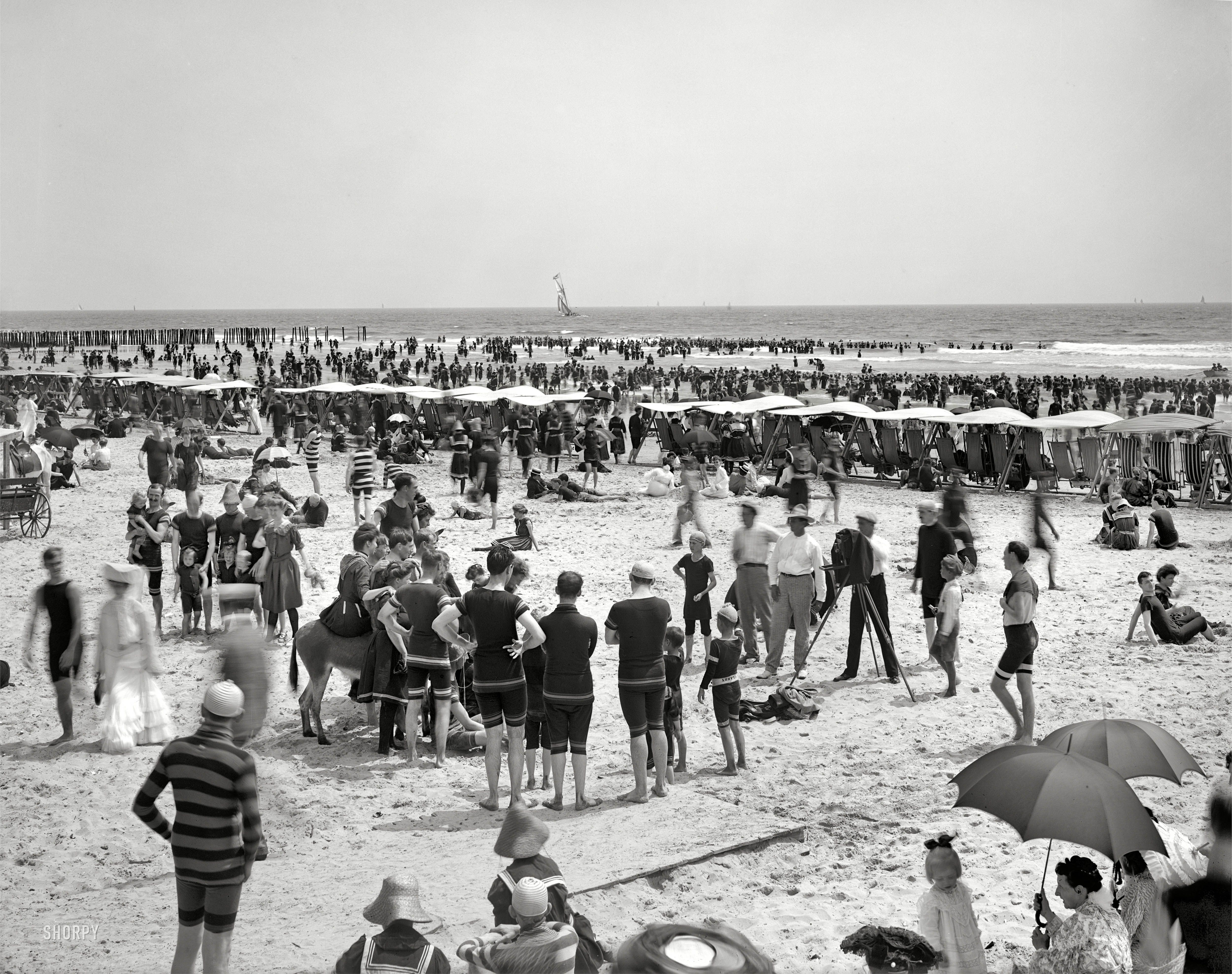 Shorpy historical photo archive seasons in the sun