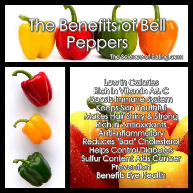 Peppers Are Actually Fruits Not Vegetables And Are Getting Attention From Nutritionists About Their Stuffed Peppers Bell Pepper Benefits Stuffed Bell Peppers