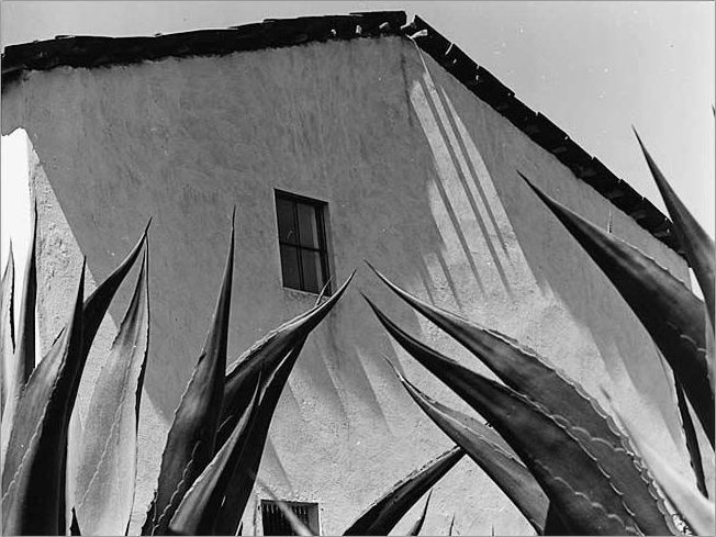 Window on the Agaves Manuel Álvarez Bravo, 1976