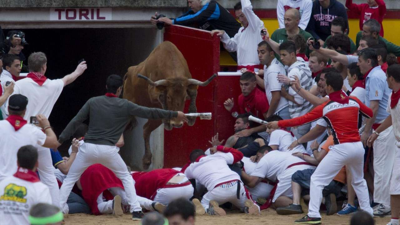 Un grupo de mozos se agolpa en la entrada de toriles mientras una vaquilla salta por encima de ellos después del encierro con toros de la ganadería de Victoriano del Río en los Sanfermines en Pamplona. (EFE)