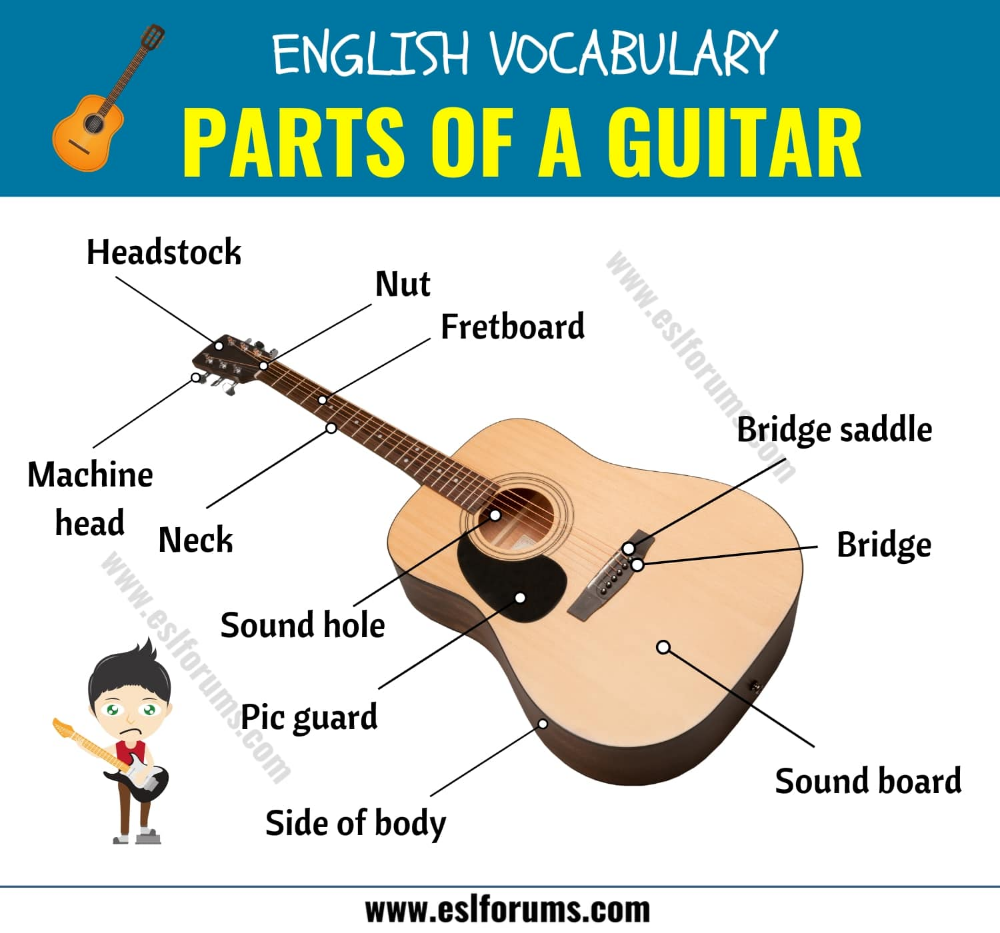 Parts Of A Guitar Different Parts Of A Guitar In English With Esl Picture Esl Forums English Vocabulary English Vocabulary Words Learn English Words