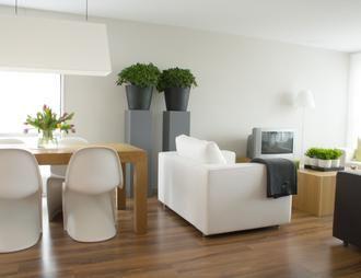 Kwiaty Dla Ciebie I Bliskich Rosliny W Naszym Domu Home Decor Home Cheap Living Rooms