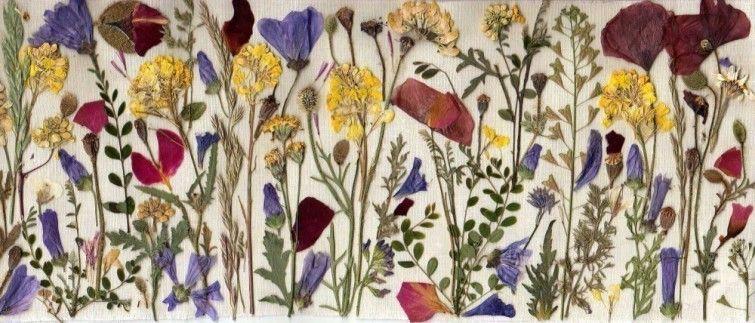 Ideas para decorar tu casa con flores secas Flores secas, Decorar - flores secas