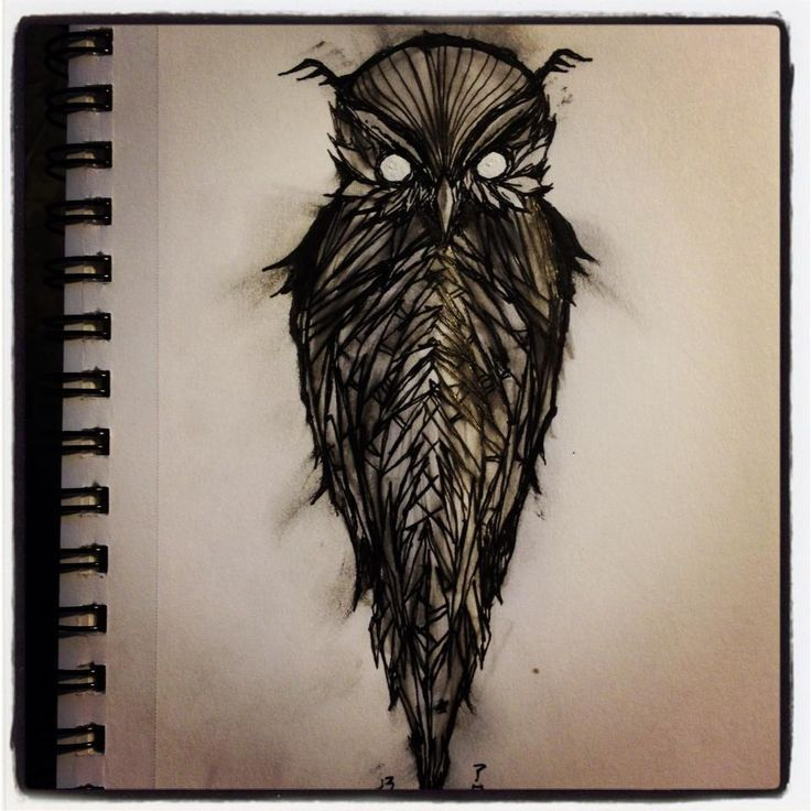 Cipelahq Owl Tattoo Design Owls Drawing Evil Eye Tattoo
