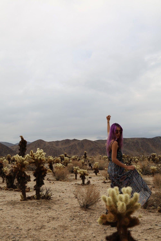 http://stardustbohemian.com/desert-daze/