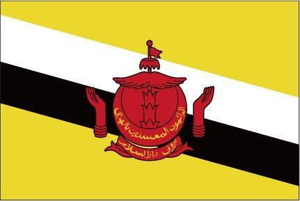 The Flag Of Brunei Bandeiras Dos Paises Do Mundo Bandeiras Dos Paises Bandeiras