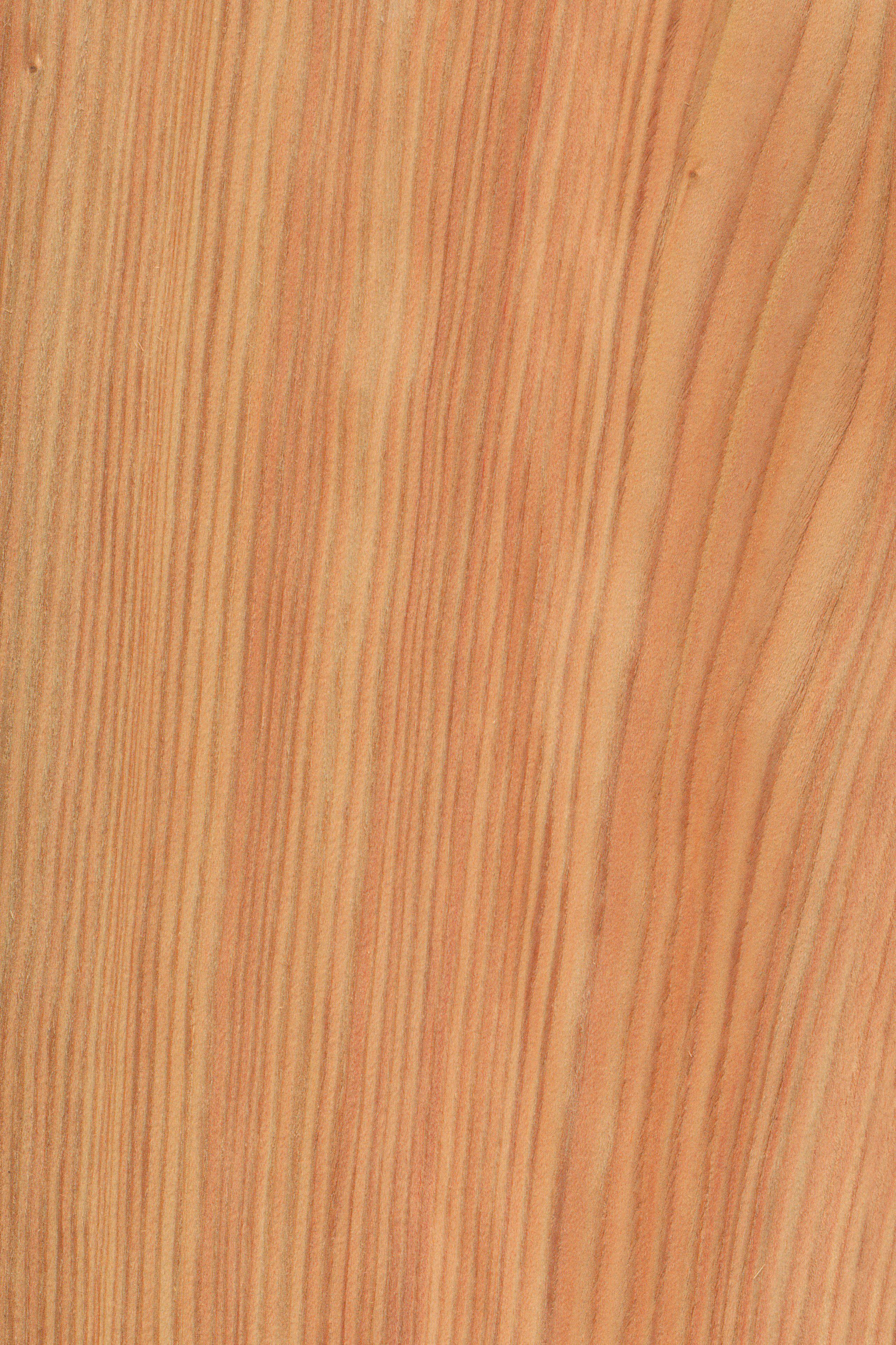 Pin On Leben Mit Holz